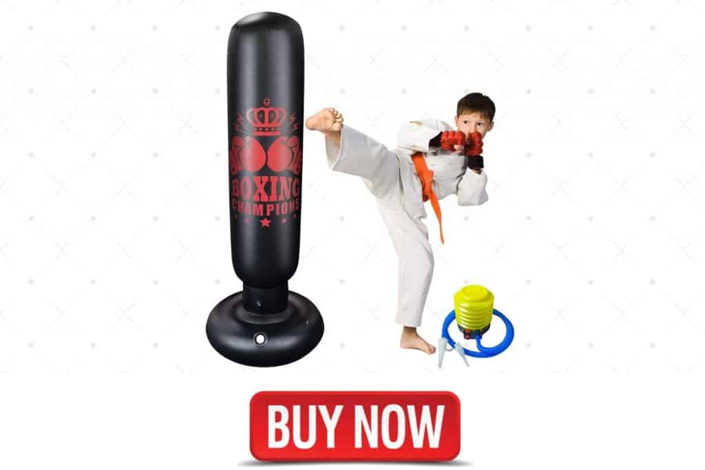 best home workout heavy bag