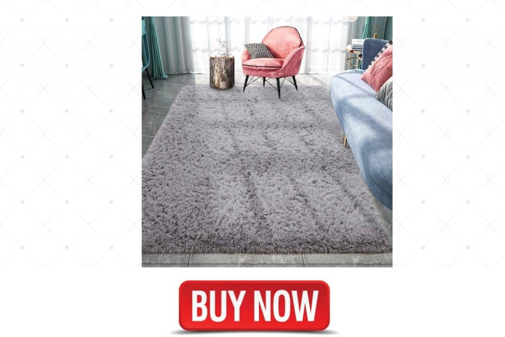 Pacapet Fluffy Area Rugs